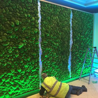 Living moss wall being installed in Land Rover's hospitality suite at Twickenham Rugby Stadium